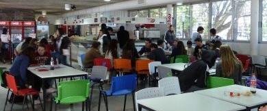 Bayo defiende el servicio de comedor prestado por Serunión | Rioja2.com