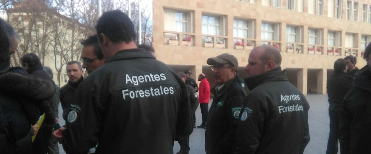 agentes forestales